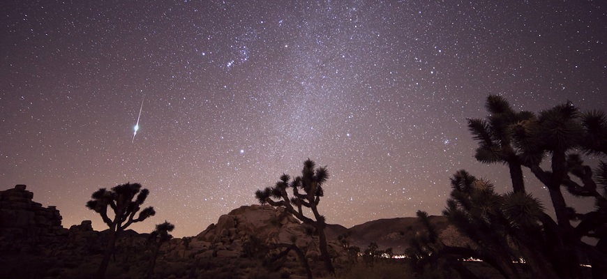 11/6/2015 - Taurid Meteor Shower - Joshua Tree , CA by Channone Arif from Flickr (Creative Commons License)