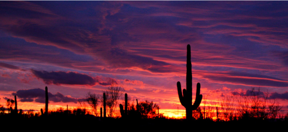 Sunset in AZ by Miguel Folch