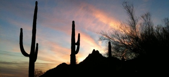Savouring a soft Scottsdale Sunset by Nelson Minar from Flickr