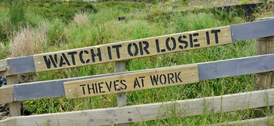 Watch it or lose it - thieves at work by Tristan Schmurr from Flickr (Creative Commons License)