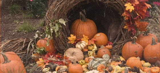 Fall Cornucopia by Ron Cogswell from Flickr (Creative Commons License)